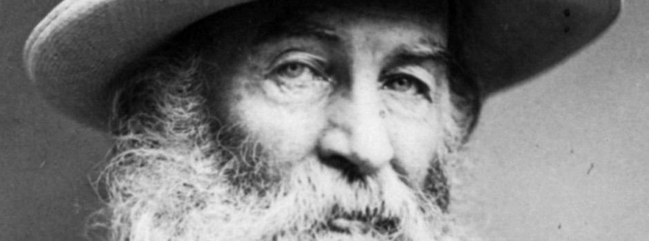 essay about whitman